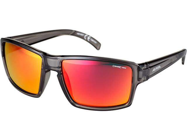 Alpina Melow Glasses grey transparent